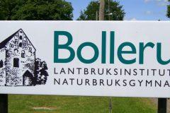 Bollerup
